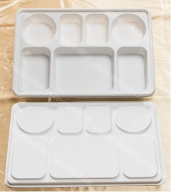 7 Compartment Plates with lids
