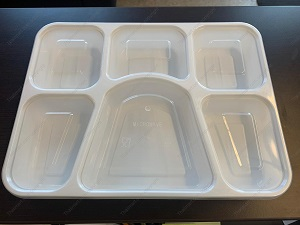 6 Compartment Plates with lids