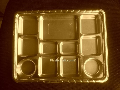 Gold Eleven compartment   plates